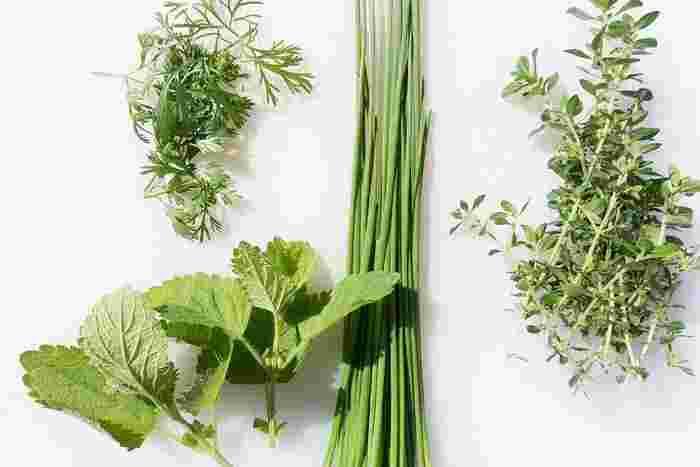 摘みたてのハーブは、その良い香りがお部屋全体にふわりと広がります。ほんのひと枝なのに、あるとないでは大違い。やっぱり、ドライのものよりもぐっと香りがよく、その可愛らしいかたちもお料理をより美味しそうに見せる手助けをしてくれます。
