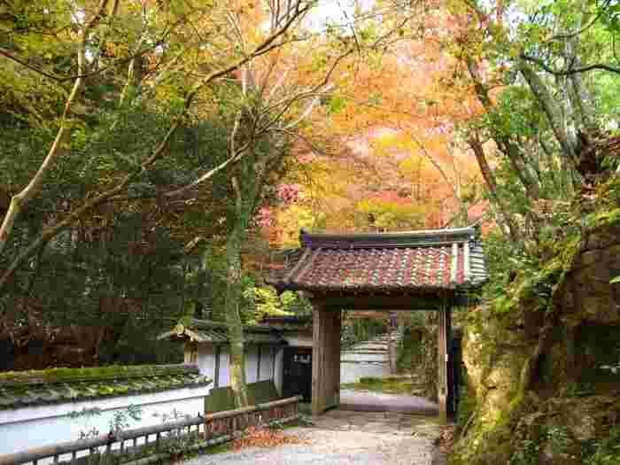 神護寺、西山寺とならび「三尾(さんび)の名刹」の一つに数えられる高山寺は、8世紀後半に創建された真言宗の寺院です。