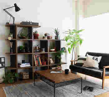 黒でまとめたシックなインテリアにも、観葉植物があるだけで柔らかい雰囲気に。