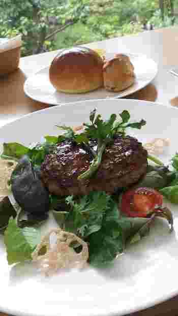 ハンバーグはランチにぴったり。パン付なのも嬉しいポイントです。サラダの彩りが食欲をそそります!