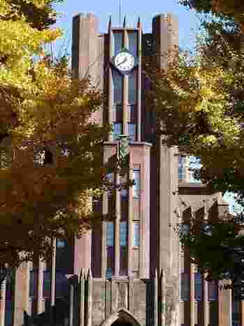 1925(大正14)年に建てられた安田講堂といちょうの木も絵になりますね。キャンパス内は自由に見学でき、食堂や売店など施設の一部も一般開放されているので、いちょう並木以外にも散策楽しんでみてはいかがでしょうか。