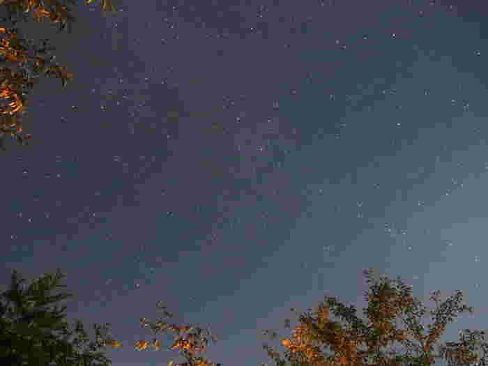 自然が豊かな那須高原。こんなに綺麗な星空を、一緒に見上げることができるなんて幸せですね…。君は何を想うのかな。