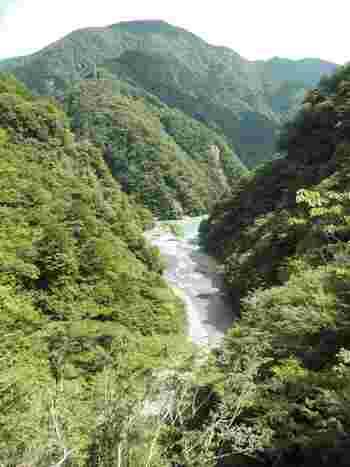 飛龍橋からの眺めは格別です。山と清流が織りなす峡谷美はいつまで眺めていても飽きることがないでしょう。