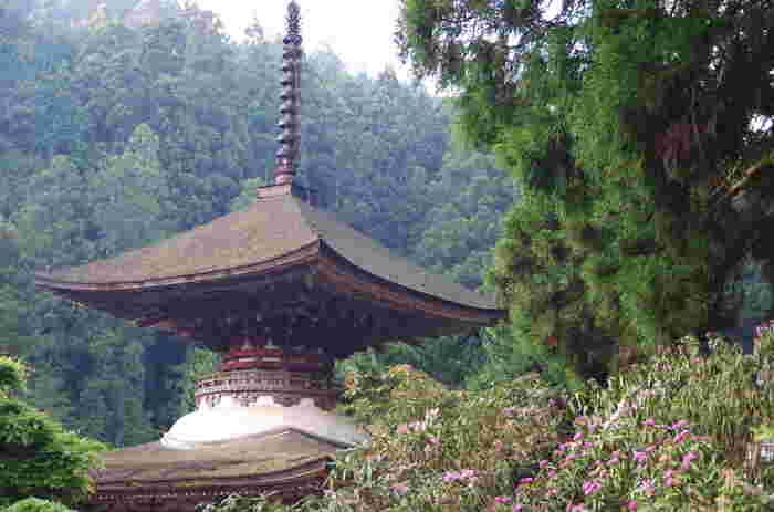 金剛三昧院は、1211年に源頼朝の正室で「尼将軍」との異名を持つ北条政子が、頼朝の菩提を弔うために建立した寺院です。源頼朝・実朝父子の菩提が弔われている多宝塔は、国宝に指定されています。