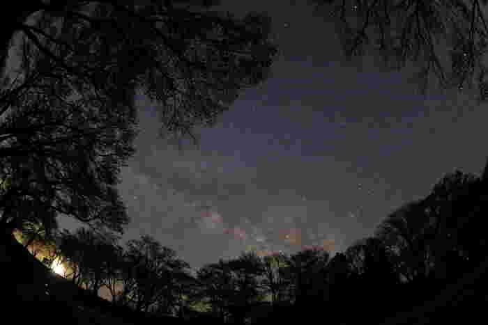 空気が澄んだ曽爾村では、日が暮れると空は満天の星空となります。漆黒の闇に星々が煌めく曽爾村の夜空は、藍色のベルベットに宝石を散りばめたかのような美しさです。