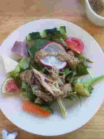金沢駅から徒歩5分ほどの「cocomi 心味」は、地元農家さん直送の有機・無農薬野菜や加賀野菜がいただけるお店。人気は、前菜にもサラダにもたっぷりのお野菜を使用した「サラダランチ」。葉物から根菜まで常時30種類もあるそうで、加賀太きゅうりやへた紫なすなど、珍しい加賀野菜を食べたい方にもおすすめです。