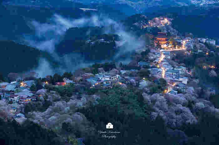 日本一の桜の名所として知られる吉野山では、一目で1000本の桜が眼前に広がる「一目千本」と呼ばれる眺望スポットが随所にあります。