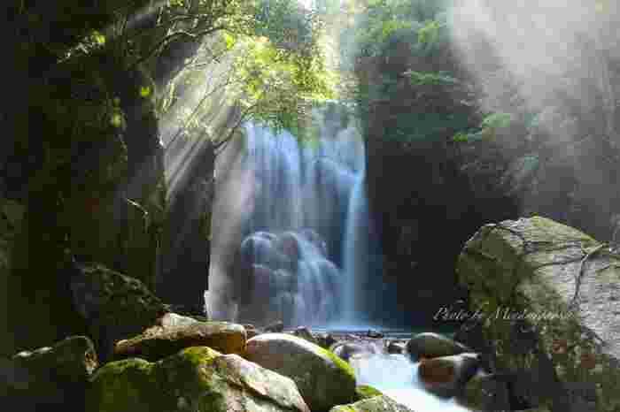 世界遺産の熊野古道やパンダがたくさんいるアドベンチャーワールドなど、観光スポットが多彩な和歌山県。温泉も多く湧き出ていて数々の名湯があります。