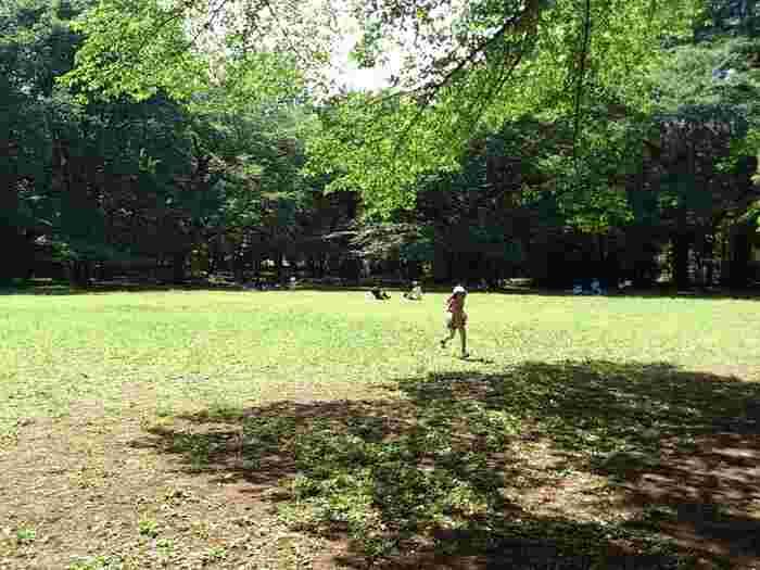 芝生広場でくつろぐのも◎