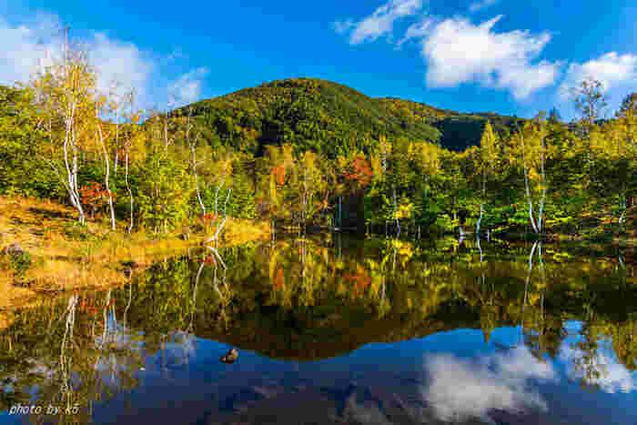 夏は避暑地、夏から秋にかけては登山客、冬はスキー客で賑わう乗鞍高原は、信州地方でも指折りのリゾート地として人気を誇ります。