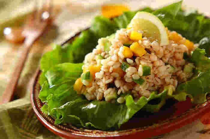 食物繊維が豊富な押し麦を使ったサラダです。買ったはいいものの、つい余らせてしまいがちな押し麦の消費にもおすすめのレシピ。ブラックオリーブが入ることで、大人っぽい味わいのサラダになっています。