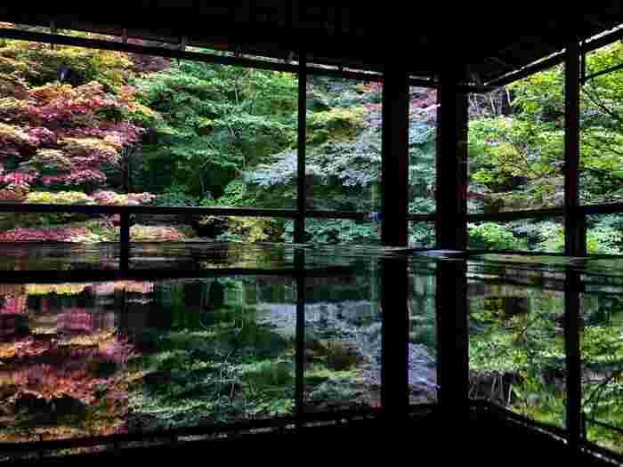 【浄土式庭園で知られる「瑠璃光院」】