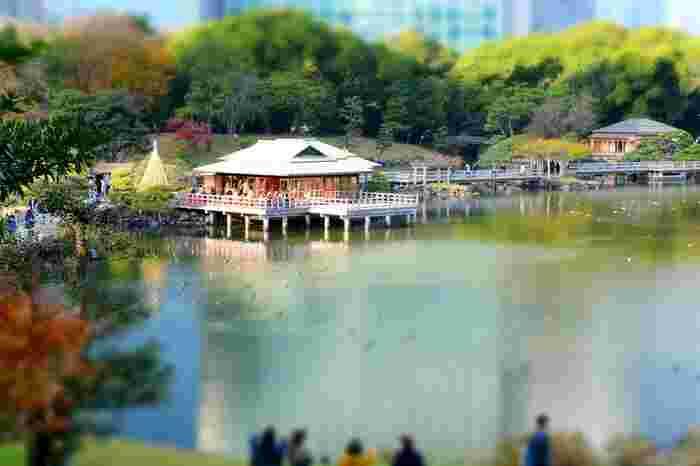 汐留にある「浜離宮恩賜庭園」は、江戸時代に徳川将軍家の別邸だった大名庭園です。都内で唯一の海水を引き入れた池が見所です。