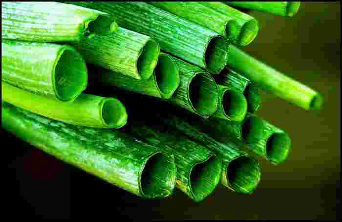 緑の葉の部分にはカルシウムやカロテン、ビタミン類が豊富に含まれていて、白い部分よりも栄養価が高いと言われています。 白ネギをお料理として使ったあとの青ネギ部分は捨てずに、輪切りやみじん切りにして、薬味などとしてぜひ使ってくださいね。