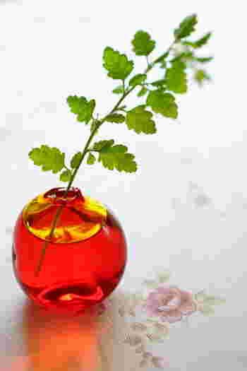 クリアなガラスに色が入っていると、光の差し込み次第で色合いの変化を楽しめます。深みのある赤には、素朴な葉っぱのようなグリーンが美しく映えます。