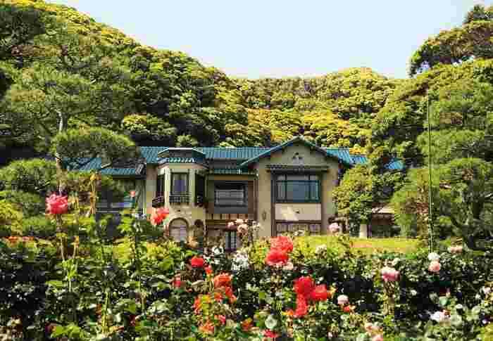 5月中旬にバラの見ごろを迎える鎌倉の花の名所「鎌倉文学館」。その魅力についてご紹介します☆