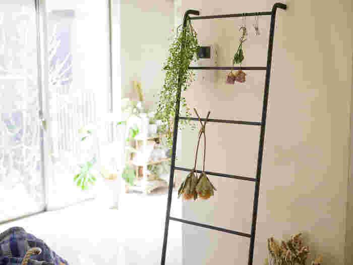 グリーンやドライフラワーを飾るスペースにしてもおしゃれ!白い壁に映えてお部屋の良いアクセントになりますね。何をどんな風に飾ろうか、考える過程も楽しめそう。