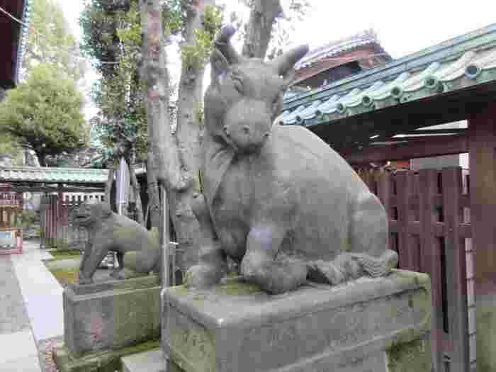 以前は隅田公園内に神社がありましたが、1932年(昭和7年)に現在の場所に再建されました。境内に入ってすぐ目に留まるのが、狛犬ならぬ「狛牛」。凛々しい表情は、狛犬に負けないほどのパワーが感じられます。