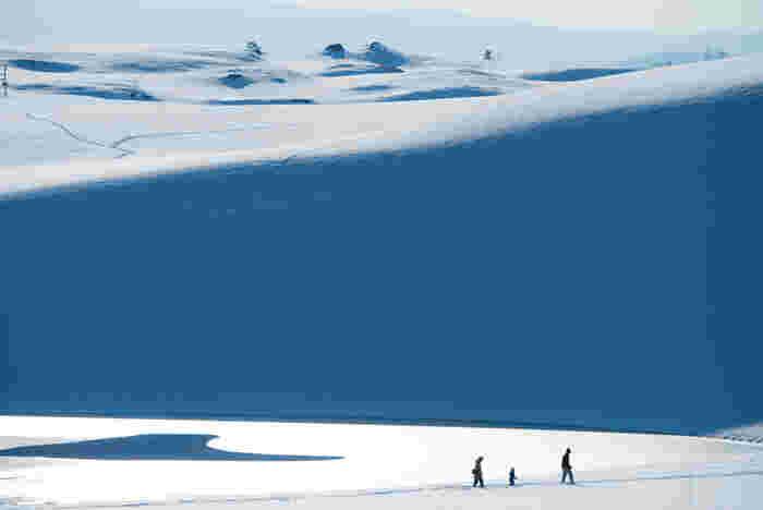 こちらは、雪の「鳥取砂丘」。まさに雪原、大スケールの景観が広がります。馬の背頂上まで雪をかきわけた足跡が残ります。冬の砂丘もまたいいものですね。
