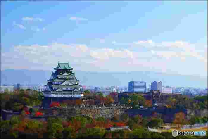 晩秋になると大阪城公園では敷地内に植栽されている様々な樹々が鮮やかに彩ります。朱色に染まった樹々が天守閣を取り囲むように並んでいる様は、錦絵のような素晴らしさです。