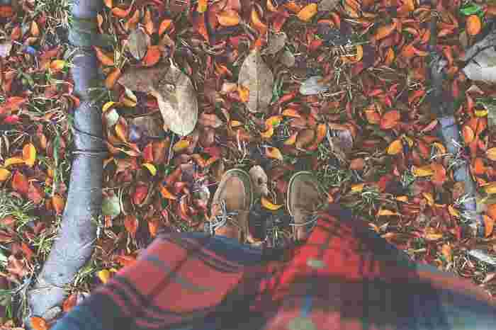 せっかく秋の季節に出かけるのなら、秋ならではの楽しみ方をしたいものですよね♪ここからは、秋をぞんぶんに満喫するための楽しみ方をいくつかご紹介していきます。