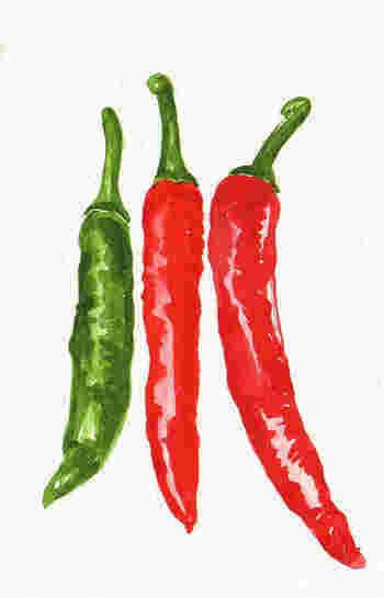 チリコンカンとチリビーンズの違いは諸説あり「厳密な違いは?」というと難しいところですが、チリコンカンには唐辛子と肉がマストで入っており、チリビーンズのメイン具材は豆になります。どちらもテキサス発祥で非常に近い料理のようです。