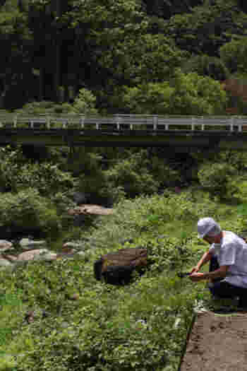 佐藤商店があるのは、山形と秋田の県境・最上川の源流となっている塩根川、そして奥羽山脈の神室連峰、鳥海山麓のすそ野の鳥海山地に囲まれた「及位(のぞき)」という場所。
