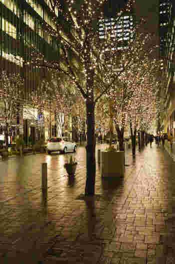 約200本の街路樹に灯されるLED電球の数は、約100万球にもなります。雨の日は、路地に敷かれた石畳が丸の内イルミネーションのシンボルカラーでもある「シャンパンゴールド」の灯りをほんのりと映し出し、幻想的な雰囲気を醸し出しています。