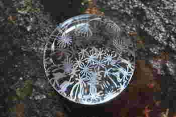 タンポポの綿毛に落ちた水玉を思い起こさせるペーパーウェイト。ちょっと疲れた時にゆっくり覗き込むと、気分転換できそうですね。