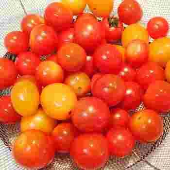 トマトはミニトマトから中玉くらいの小さいものがいいでしょう。新鮮なトマトを沢山用意します。