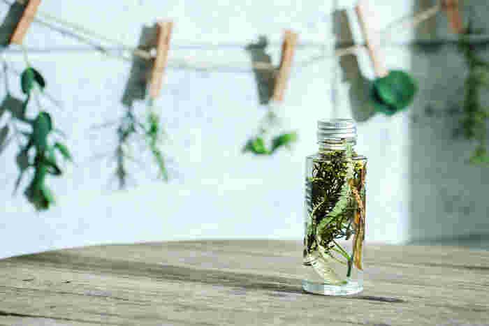 (グリーン中心のレシピ:フィリカ/バンクシャー葉/スパイラルリーフ/笹葉ユーカリ)  ノコギリ状の葉のバンクシャー葉を中心に、ひらひらとした羽のようなフィリカ、すらり長い笹葉ユーカリやスパイラルリーフなど、それぞれ葉のフォルムが楽しめます。