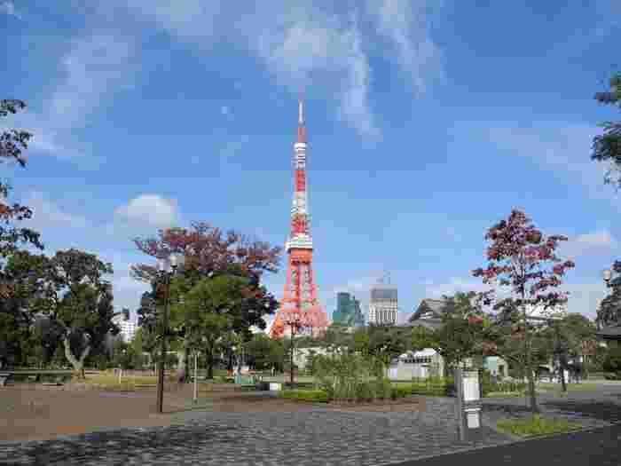 たまには、目的地を設定して走ってみるのもおすすめ。東京タワーや近くのランドマーク、昔通った学校など、何かを目指して走れば、目的地に着いた時に達成感も得られます。