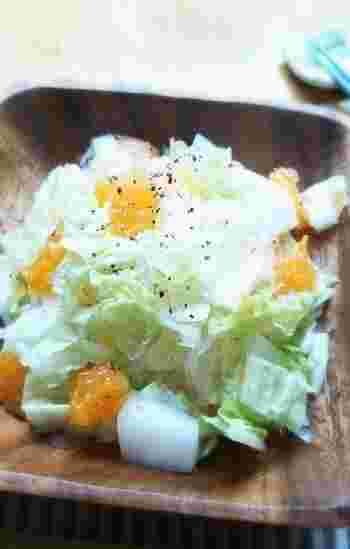 冬野菜代表・白菜との相性は抜群ってご存知でした?