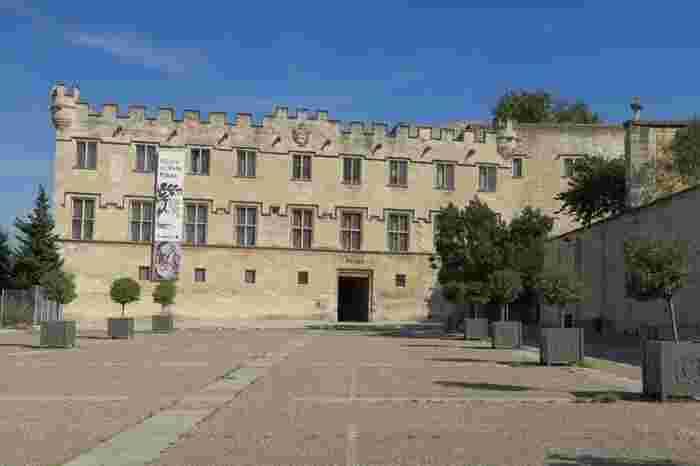 フランスにおいて屈指のコレクションを誇るプティ・パレ美術館は、14世紀に元枢機卿の館として建築された建物です。ここには中世からルネッサンス期の傑作が数多く所蔵されています。