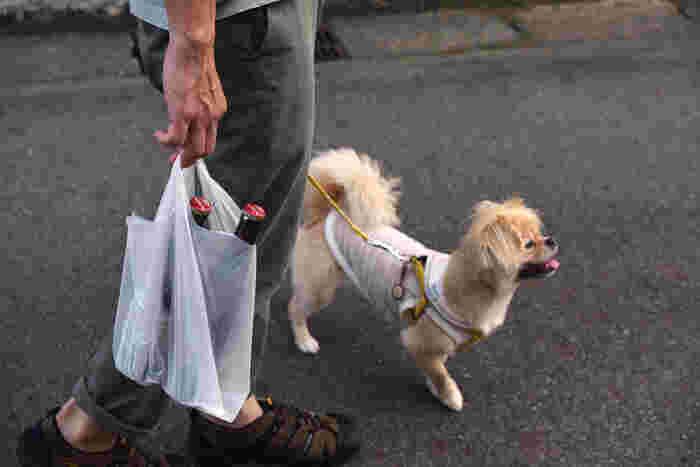 今夜の献立に欠かせないビールも、お忘れなく。愛犬「ちゃこ」ちゃんのお散歩ついでに、ご近所の酒屋でお気に入りの瓶ビールを買うのが、冨田さんの定番コースだそう。