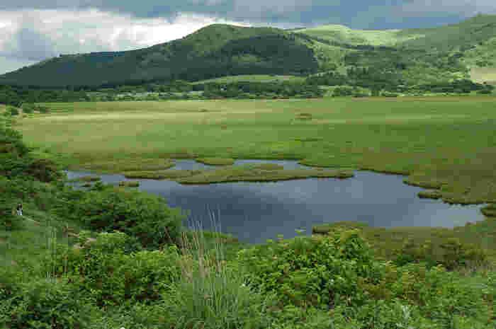 霧ケ峰には3つの湿原があり、いずれも国の天然記念物に指定されていますが、最も規模が大きいのがここ「八島ヶ原湿原」。この眺めのある湿原の入り口まで、同名のバス停からわずか数分♪