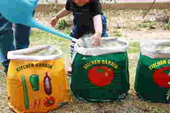 お子様と一緒に楽しみながらできるから、小さなお子様のいる方におすすめ♪こちらはトマトとパプリカを育てることにしたようですね。