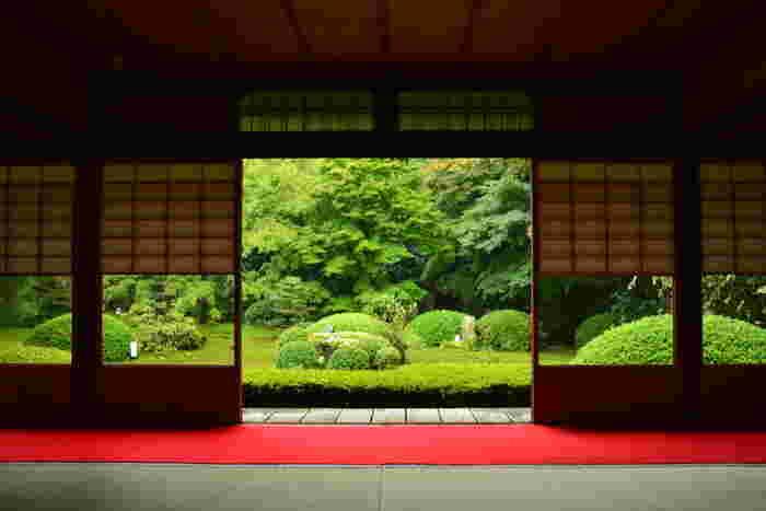 JR京都駅から1駅の、東福寺駅より徒歩20分のところにある「雲龍院」。泉湧寺の別院です。 こちらは「大輪の間」。雲龍院の大広間で、室内から庭を眺めると障子が額縁のような役割を果たします。