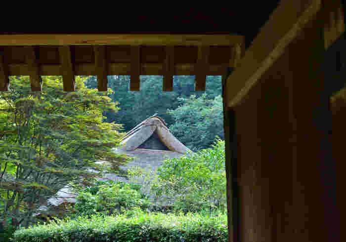 園内には江戸時代の古民家(旧永井家住宅・旧荻野家住宅)があり、歴史ある建物から当時の暮らしを感じることができます。こちらもぜひ立ち寄って、日本の古き良き時代に思いを馳せてみてはいかがでしょうか。