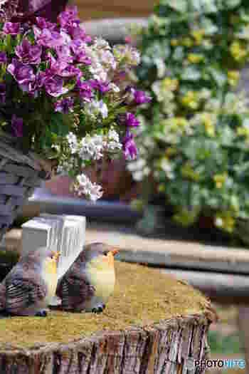 春から初夏にかけてやってくるお花のシーズン。心癒される風景を見に、家族や友人と出かけてみませんか。