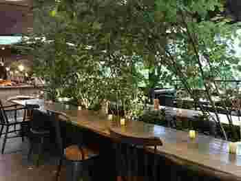 ガーデニング専門店内のカフェなので、店内は緑で溢れ、お家のガーデニングなどの参考にもなります。木のウッディーな雰囲気とシンプルなアイアンを使ったインテリアのセレクトもおしゃれ。