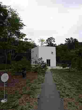 那須の深い緑の森の中に凛と佇むキッチン&カフェ「森をひらくこと、T. O. D. A. キッチンプレイス」。真っ白な四角いプランターのような建物の屋上では柿の木が育てられていて、周囲の緑と相まって建物自体がまるでアートそのもの。