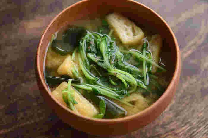豆苗・わかめ・油揚げで作るシンプルなみそ汁です。豆苗だけでも栄養たっぷりなので、他の野菜がない時に役立つレシピ。火の通りが早い具材ばかりなので、こちらもサッと作れますよ。