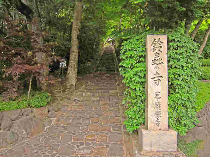 京都嵐山にある禅寺の華厳寺は、一年中鈴虫が泣いているということで「鈴虫寺」として親しまれている京都を代表する人気のお寺。こちらには、ひとつだけ願い事を叶えてくれるという幸福地蔵さんが立っておられます。日本で唯一、わらじを履いていらっしゃるそうで、それは願いを叶えるために参拝客の所まで歩いて来て下さるからなんだとか。