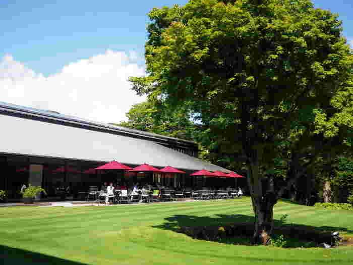 そして、どの美術館にも仙石原の豊かな緑を背景に整えられた庭園が広がり、開放的なカフェやレストランが併設されています。 【「箱根ラリック美術館」の庭園とレストラン「LYS」】