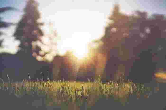 一段階目…ヤマ=禁戒(きんかい) 盗まない、無用な暴力をふるわないなど慎むべき部分。  二段階目…ニヤマ=勧戒(かんかい) 感謝の気持ちを持つこと、清潔さを保つなど自分自身の生活態度を見直す。  三段階目…アサナ=対位法 ヨガの特徴ともいえるポーズのこと。動く瞑想。  四段階目…プラーナヤーマ=呼吸法 呼吸法によって生命力(プラーナ)をコントロールする。  五段階目…プラティヤハーラ=制感(せいかん) 意識的に動作を鎮めて、五感を内に向かわせ瞑想に入ること。  六段階目…ダーラナー=凝念(ぎょうねん) さらにマインドを納めて集中していくこと。  七段階目…ディヤーナ=静慮(じょうりょ) 集中していた意識が同化し始め、直感が起きてくる。日本では「禅」とされる。  八段階目…サマディ=三昧(さんまい) 全てから解放された状態。悟りの境地。