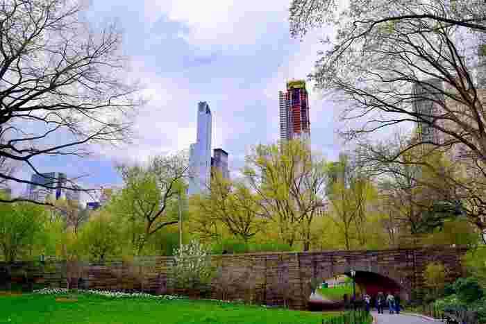 最後は王道も王道、ニューヨークで1番大きくて、有名な公園セントラルパークをご紹介します。東西に約0.9km、南北に4kmという面積を持つセントラルパークには、レンタルサイクルもあるのでパーク内をサイクリングしながら楽しめます。