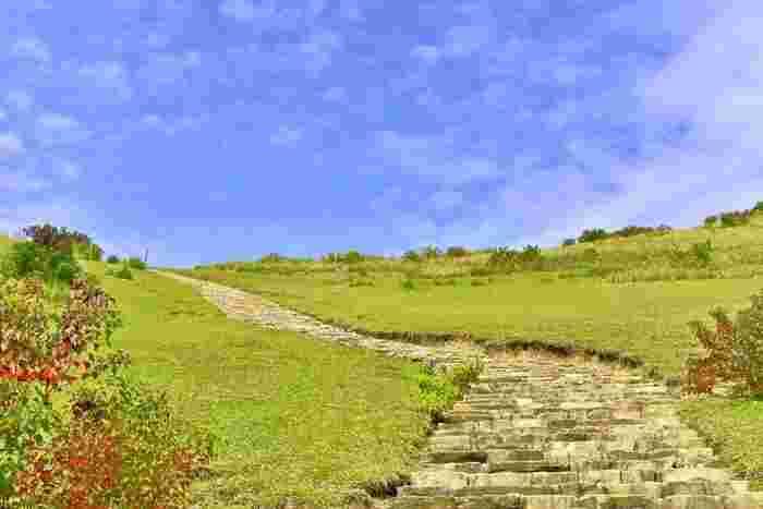 春日大社に隣接する若草山は、山全体が芝に覆われている丘のようになだらかな山です。