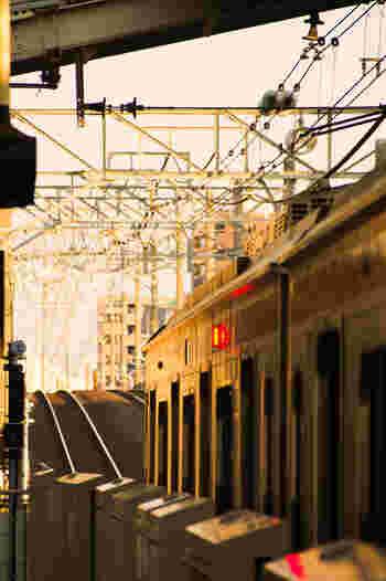 中心の和光市駅には、東京メトロ有楽町線・副都心線、東武東上線が乗り入れており、最短で池袋まで約14分、新宿三丁目まで約20分、渋谷まで約25分でアクセスできます。始発駅でもあるので、ラッシュ時も座って移動できると人気なんです。