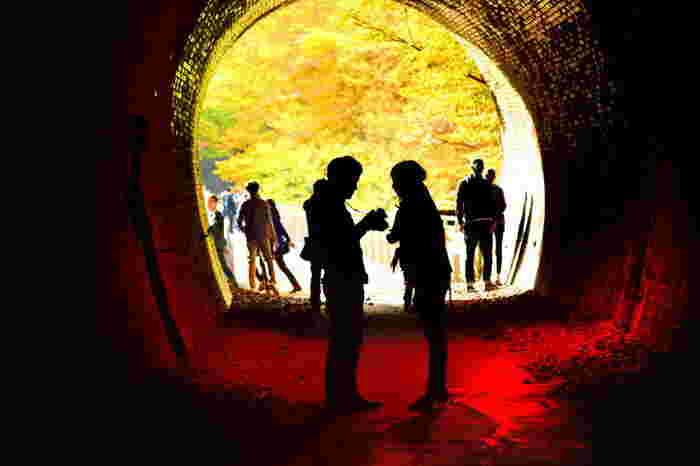 """上越道の沿線には、世界遺産・富岡製糸場や軽井沢、志賀高原や戸隠神社等など、数多くの観光スポットや名所があります。  【急坂の難所だった横川-軽井沢間は、鉄道ファンに有名な""""アプト式鉄道""""であっため、平成13年に廃線敷を遊歩道に整備した際に「アプトの道」と命名され、現在は多くのハイカーで賑わう碓氷峠の人気スポットとなっている。(画像は、「アプトの道」のトンネルの一つ。)】"""